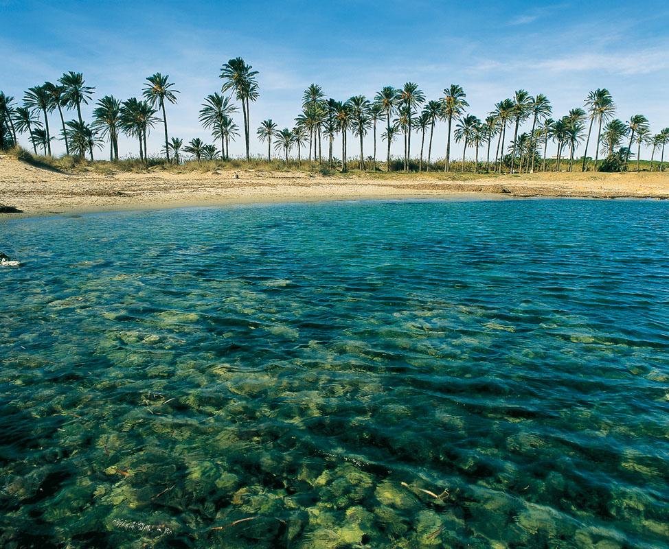 Hotel en torrevieja apartamentos fresno situado a 20 metros de la playa del cura - Casa del mar alicante ...