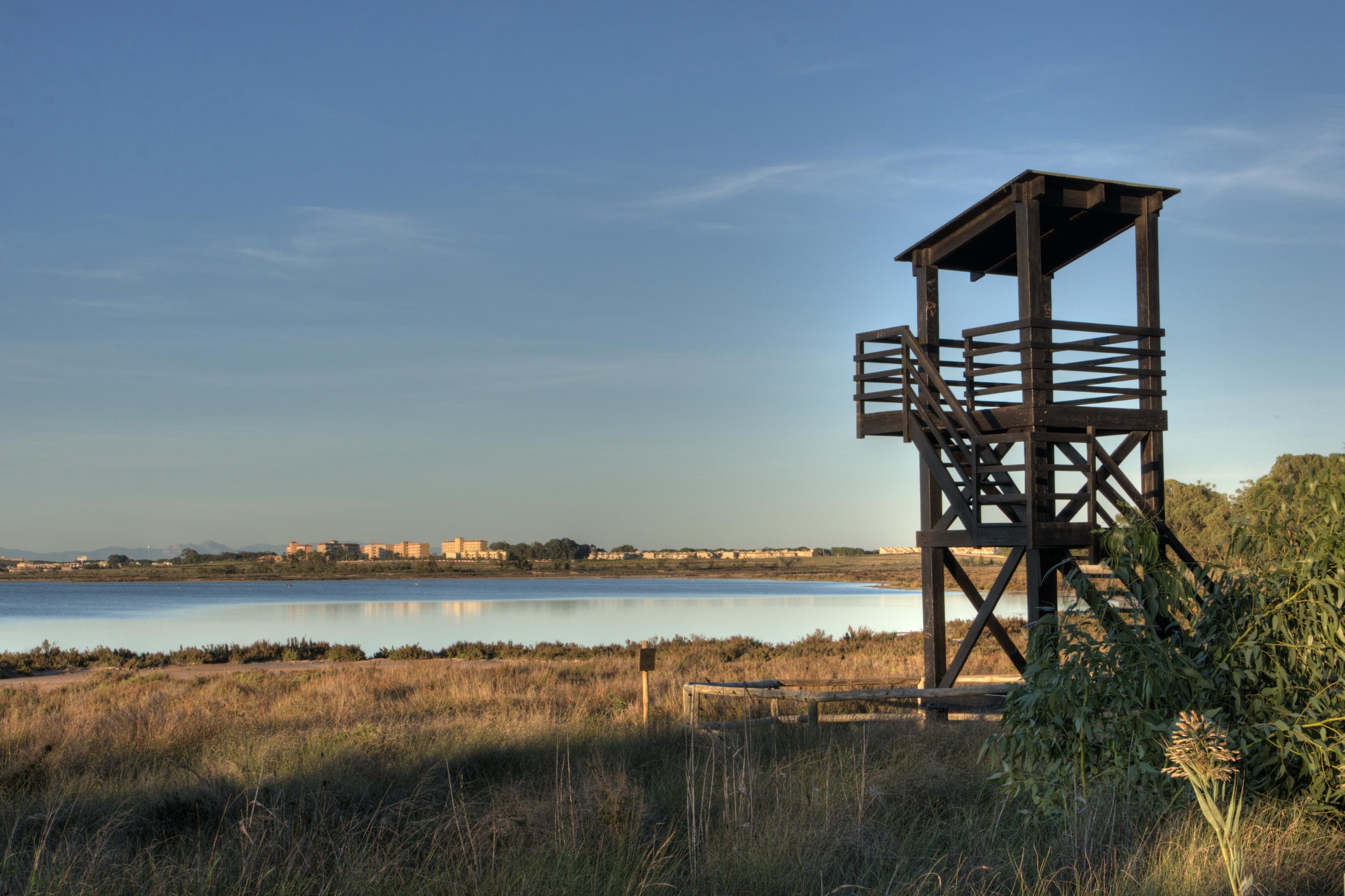 Alrededores del hotel torrevieja apartamentos fresno situado en la playa del cura - Apartamentos fresno torrevieja ...